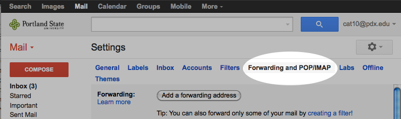 Clicking on 'forwarding and POP/IMAP'