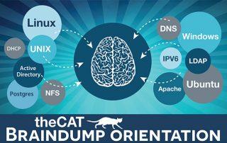 braindump 2017 advertising image