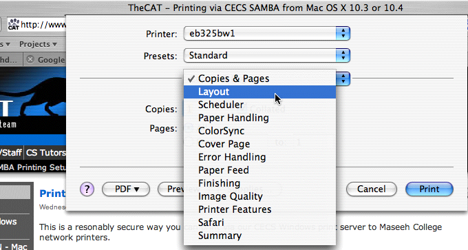 selecting layout option in print dialog