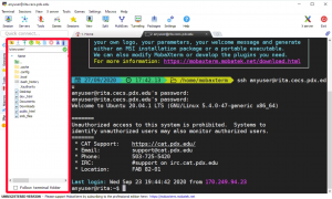 image highlighting SFTP file explorer in MobaXterm interface when connecting via SSH to Linux server
